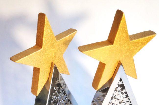 3-special-star-per-studio-vatore-ai-premi-mediastars